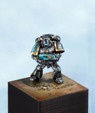Space Marine pro painted , warhammer 40K