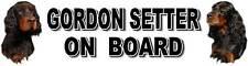 GORDON SETTER ON BOARD Car Sticker By Starprint