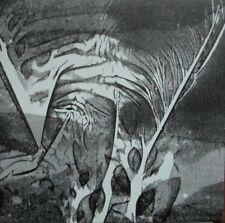 ANDREW CHALK The River That Flows Into The Sands LP CLEAR af ursin organum