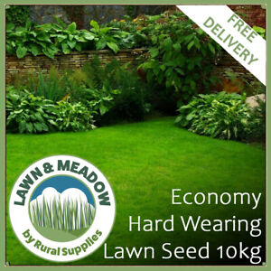Economy Hard Wear Lawn Grass Seed-10KG HIGH QUALITY AFFORDABLE SEED GARDENS BULK