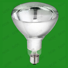 6x 250W Infra Red Heat Bulb, Carvery Food Service Restaurant Catering Lamp E27