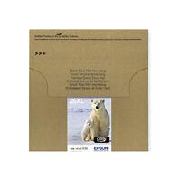 Genuine Epson 26XL T2636 Polar Bear Multipack Ink jet Print Cartridges T26364510