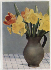Alte Kunstpostkarte - Carl Lipp - Märzenbecher