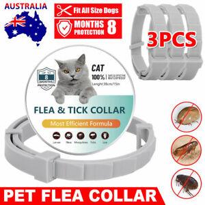 3x Pet Dog Cat Flea Collar Repel Tick Mosquitoe Pest Egg 8 Month Prevention AU