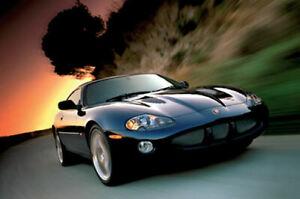 Jaguar XKR Coupe 370KM  puzzle 500 piezas 48 x 34cm Trefl