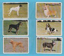 DOGS. - GOLDEN FLEECE OF AUSTRALIA -  SET  OF  L 36  DOGS  CARDS  -  1967