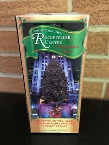Rockefeller Center Christmas Tree Kit NIP Alexandra Lewis Norway Spruce
