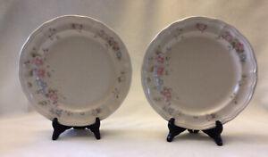 Pfaltzgraff Stoneware Pair of TEA ROSE 10 Inch Dinner Plates