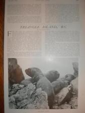 Article Triangle Island Canada BC 1909