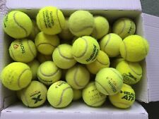 10 used tennis balls ideal for dogs toy / kids play /garden or beach cricket