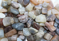 1 lb Bulk Wholesale Lot Moonstone Tumbled Stone (Crystal Healing Reiki Tumble)