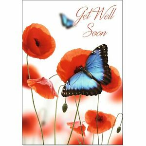 Doodlecards Get Well Card Butterfly and Poppies - Medium