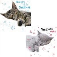 LUXURY Christmas Cards Pack 10 | Festive Tabby Cat Naps & Snoozing Kittens