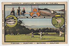 Fishing Hunting Bathing Golfing NEW BRUNSWICK Canada Tourist Bureau Postcard