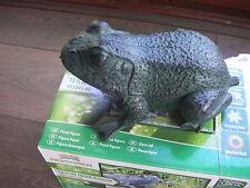 Heissner 003245-00 Spitter Frog   - New