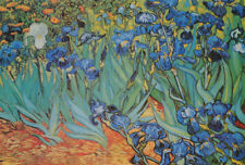 POSTER :ART : GARDEN OF IRISES by VAN GOGH  - FREE SHIPPING   #AP624 RW14 D