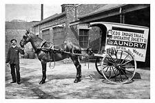 pt9297 - Leeds Co-op Laundry Horse & Cart , Gelderd Road Yorkshire - photograph