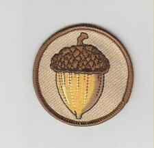Acorn Nature patch - made in the USA nature lovers