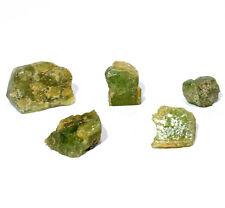 75ct 5PCS Green Peridot Rough Natural Mineral Forsterite Crystal Stone Pakistan