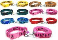 Dog Collar and Lead Leash Zebra Set Puppy Small Medium Nylon Terrier Pink Blue