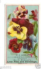 Victorian Trade Card McLANE'S LIVER PILLS at WF Saxton Lisle NY druggist Pansy