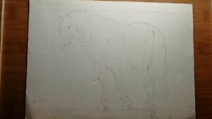 Original Old Master Drawing Horse Unsigned No Reserve