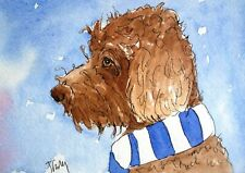 Labradoodle/Cockapoo/ Football  - Original watercolour and ink- by Jayne Farley