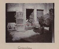 Oriente Egitto Palestina Israele Vintage Aristotipia Ca 1900