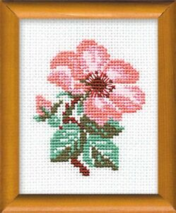 Riolis 641 La Rosa Bordado Contado