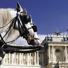 3 Tage Kurzurlaub Wien Senator Hotel Vienna 4* Kultur Shopping Städtereise
