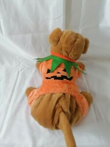 Pumpkin Dog Outfit Size S/XS for Mini Dog With Tag Dog Baby Outfits