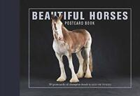 Beautiful Horses Postcard Book: 30 postcards of champion breeds to KEEP OR to SE