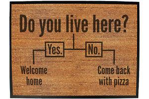 Funny Doormat Novelty Door Mat Christmas Home Office - do you live here