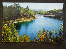 COLOUR POSTCARD OF LOCH FASKALLY  PITLOCHRY PERTHSHIRE BY DIXON
