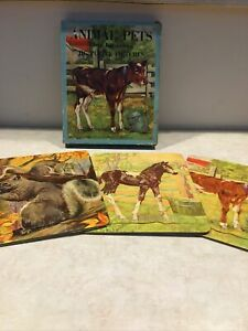 Animal Pets 3 Jig Saw Puzzles In Box