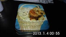 ancienne boîte en fer avec chiot et chaton