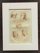 Impresión de color Buffon Antiguo montado a mano grabado c.1800 - pasiones humanas