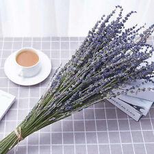 100Pcs Natural Lavender Bouquet Dried Flowers Immortal Flower Home Decorative