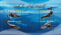 Sierra Leone - Whales - 4 Stamp  Sheet - SIE1036H