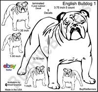 English Bulldog Laminated Vinyl Decal Stickers, 3.75 Inches, 5 Count.
