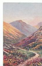 Devon Postcard - Mellor Valley - Dartmoor     ZZ3240