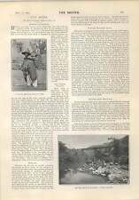 1903 Mexican Railway Atoyac Bridge Woodcutter