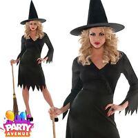 Womens Halloween Wicked Witch Black Ladies Fancy Dress Costume Plus Size