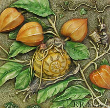 Byrons Secret Garden Picturesque Tile Slow Down Snail Bug Flower Harmony Kingdom