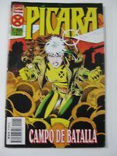 MARVEL COMICS FORUM PICARA CAMPO DE BATALLA Nº2 DE 4 EN ESPAÑOL