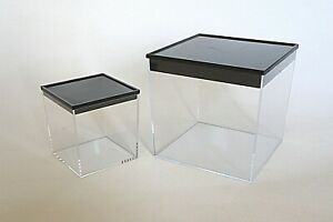 Ant Housing,Ant Farms,Out-worlds,Clear Plastic Boxes, Small & Large Set