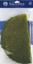 """Moss Pot Toppers 12"""" 3/Pkg-Green -Fs26315"""