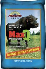 Pennington MaxQ Tall Fescue (Jesup) - 25 Lbs.