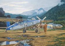 Roden 440 - 1:48 Pilatus PC-6C/H-2 Turbo-Porter  - Neu