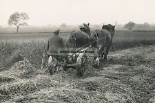 rp16428 - Harvesting with Horses - photo 6x4